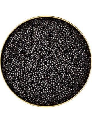 Черная осетровая икра севрюги 500 г Империал Каспийская